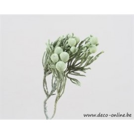 BRUNIA FROSTED GREEN 6ST
