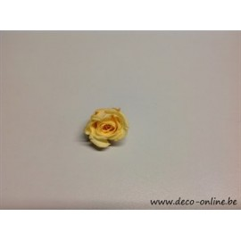 ROSE STABILISEE (KITTY) +/-3.5CM CHAMPAGNE 1PC