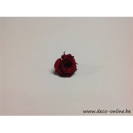 ROSE STABILISEE (MINI) +/-2.5CM BORDEAUX 1PC