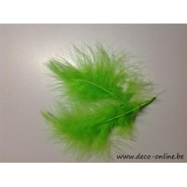 PLUMES DE MARABOU LIME GREEN +/10GR BOITE 200X120X50MM