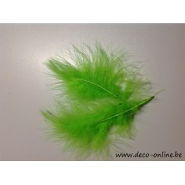 VEREN MARABOU GROOT LIME GREEN +/-10GR DOOSJE 200X120X50MM