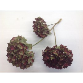 HORTENSIA NATUREL 3PCS