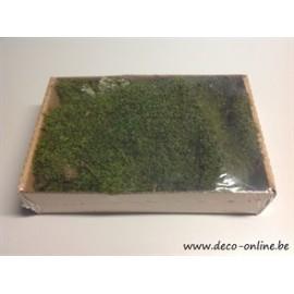 MOUSSE PLATE (MOUSSE VERT) BOITE +/-150GR