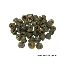 EUCALYPTUS FRUIT (PODS) NATUREL +/-200GR